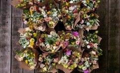 Philadelphia flower csa